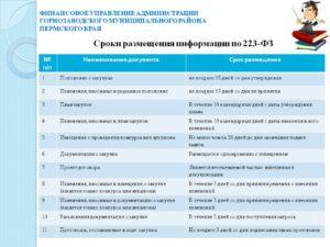Сроки размещения плана закупок по Закону № 223-ФЗ