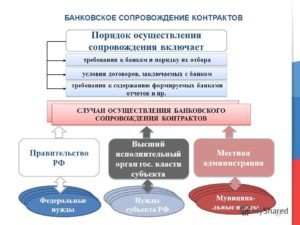 Банковское сопровождение контракта по 44-ФЗ: в каких случаях применяется
