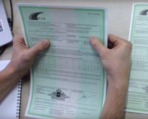 Правила оформления полиса Зеленой карты