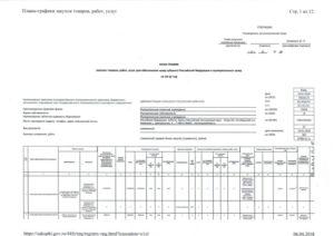 План-график на 2017 год: образец