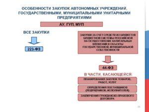 Закупки ГУПов и МУПов: когда по 223-ФЗ, а когда по 44-ФЗ