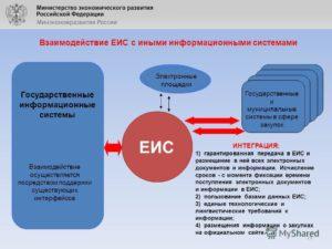 Структура единой информационной системы ЕИС