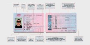 Дата выдачи первого водительского удостоверения