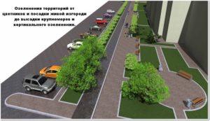 Организация парковок на придомовых территориях