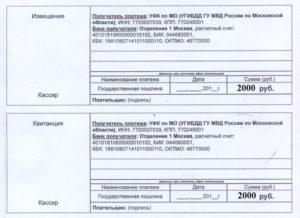 Госпошлина за выдачу международного водительского удостоверения в 2019 году