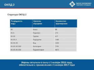 ОКПД 2 на 2017 год: структура классификатора