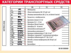 Категория c1 в водительском удостоверении