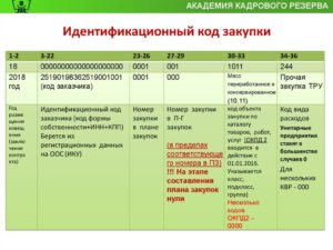 Идентификационный код закупки (ИКЗ): пример формирования