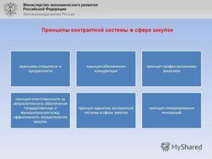 Принципы контрактной системы в сфере закупок