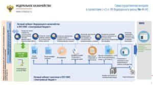 Казначейский контроль по 44-ФЗ с 2019 года