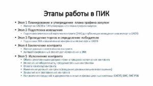 Портал исполнения контрактов ПИК ЕАСУЗ: как зарегистрироваться и начать работать