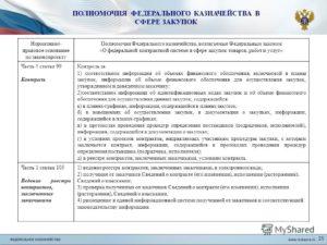 Новые полномочия Федерального Казначейства России в сфере закупок