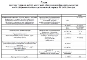 План закупок по 223-ФЗ на 2019 год: образец заполнения