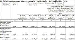 План закупок бюджетного учреждения (ПФХД)