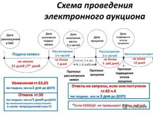 Подведение итогов электронного аукциона по Закону № 44-ФЗ