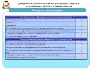 Контроль за соблюдением законодательства РФ. Практика проведения проверок размещения заказа