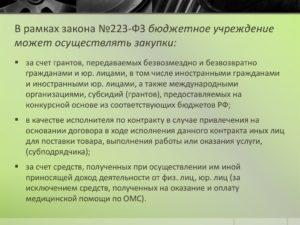 Информация для бюджетных учреждений по подготовке к началу осуществления закупок в рамках закона No 223 - ФЗ
