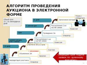 Электронный аукцион для заказчика по 44-ФЗ: пошаговая инструкция