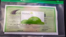 Полис Зеленая карта с доставкой
