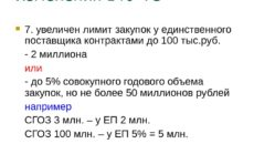 Экспертиза контракта при закупке до 100 тыс. руб.