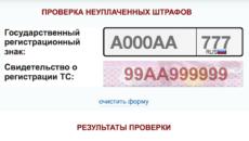 Как проверить штрафы ГИБДД по гос номеру автомобиля