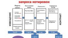 Электронный запрос котировок: виды, проведение, подача заявки