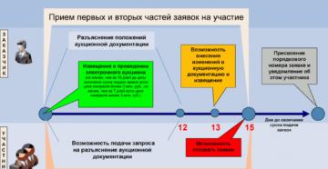 Этапы проведения электронного аукциона для поставщика