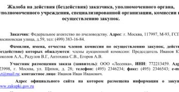 Жалоба в ФАС на заказчика по 223-ФЗ: образец, сроки, порядок