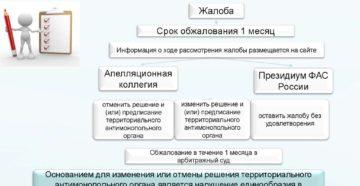Обжалование решения антимонопольного органа