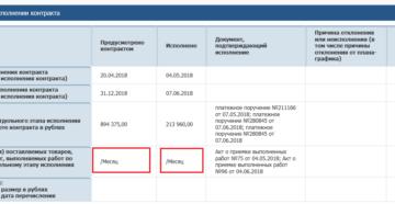 Отчет об исполнении контракта по 44-ФЗ: публикуем или нет?